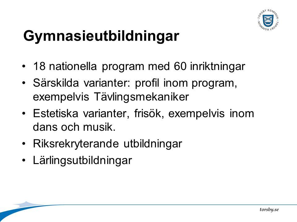 Gymnasieutbildningar 18 nationella program med 60 inriktningar Särskilda varianter: profil inom program, exempelvis Tävlingsmekaniker Estetiska varianter, frisök, exempelvis inom dans och musik.
