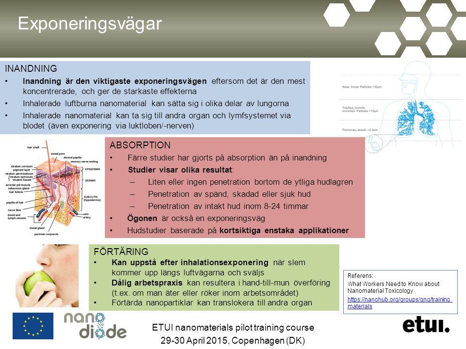 Exponeringsvägar INANDNING Inandning är den viktigaste exponeringsvägen eftersom det är den mest koncentrerade, och ger de starkaste effekterna Inhalerade luftburna nanomaterial kan sätta sig i olika delar av lungorna Inhalerade nanomaterial kan ta sig till andra organ och lymfsystemet via blodet (även exponering via luktloben/-nerven) Referens: What Workers Need to Know about Nanomaterial Toxicology https://nanohub.org/groups/gng/training_ materials ABSORPTION Färre studier har gjorts på absorption än på inandning Studier visar olika resultat: –Liten eller ingen penetration bortom de ytliga hudlagren –Penetration av spänd, skadad eller sjuk hud –Penetration av intakt hud inom 8-24 timmar Ögonen är också en exponeringsväg Hudstudier baserade på kortsiktiga enstaka applikationer FÖRTÄRING Kan uppstå efter inhalationsexponering när slem kommer upp längs luftvägarna och sväljs Dålig arbetspraxis kan resultera i hand-till-mun överföring (t.ex.
