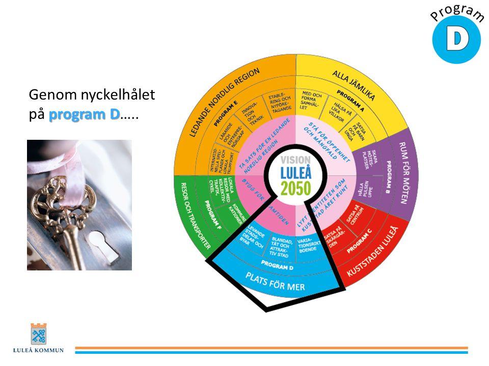 program D Genom nyckelhålet på program D…..