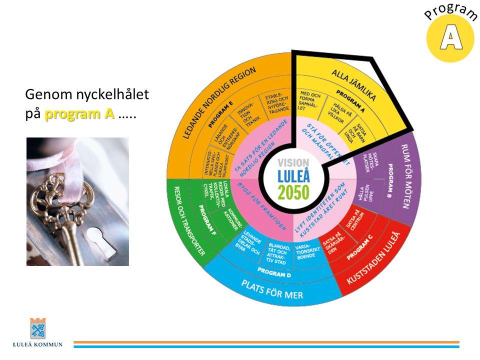 program A Genom nyckelhålet på program A …..