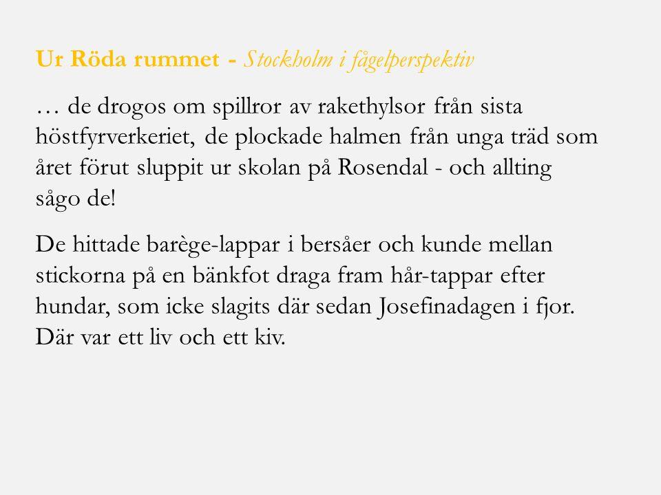 Ur Röda rummet - Stockholm i fågelperspektiv … de drogos om spillror av rakethylsor från sista höstfyrverkeriet, de plockade halmen från unga träd som