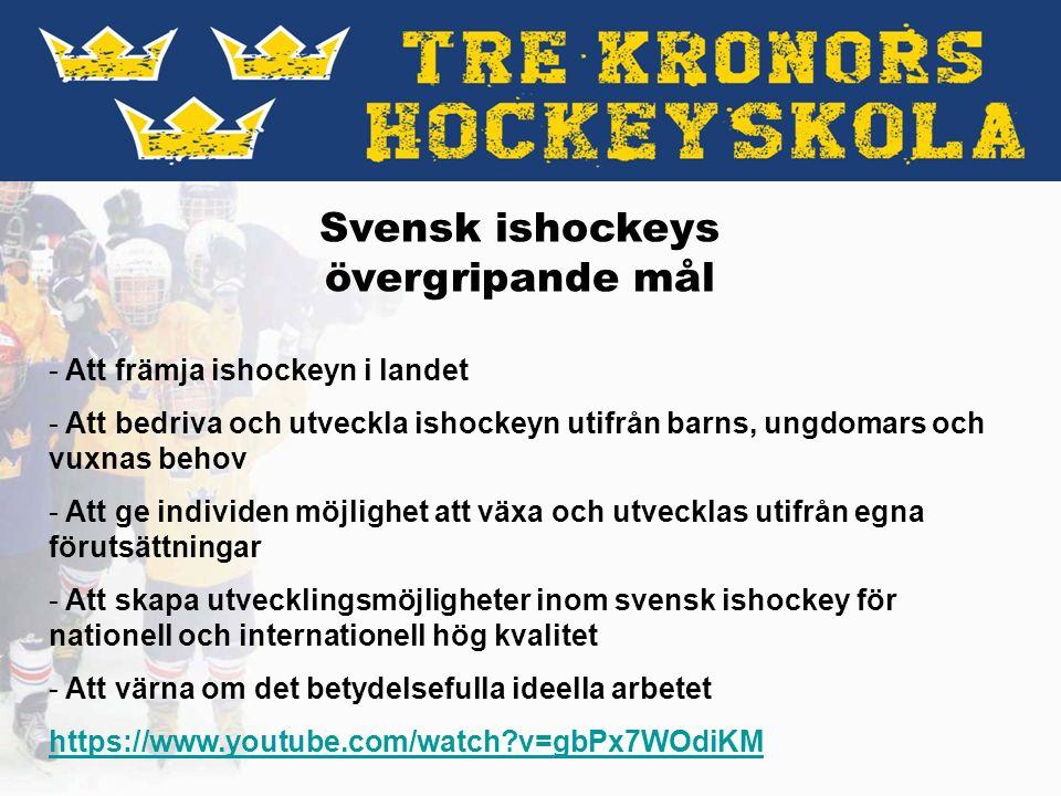 Målet Tre Kronor Hockeyskola - Att skapa ett livslångt intresse där alla som vill får vara med.