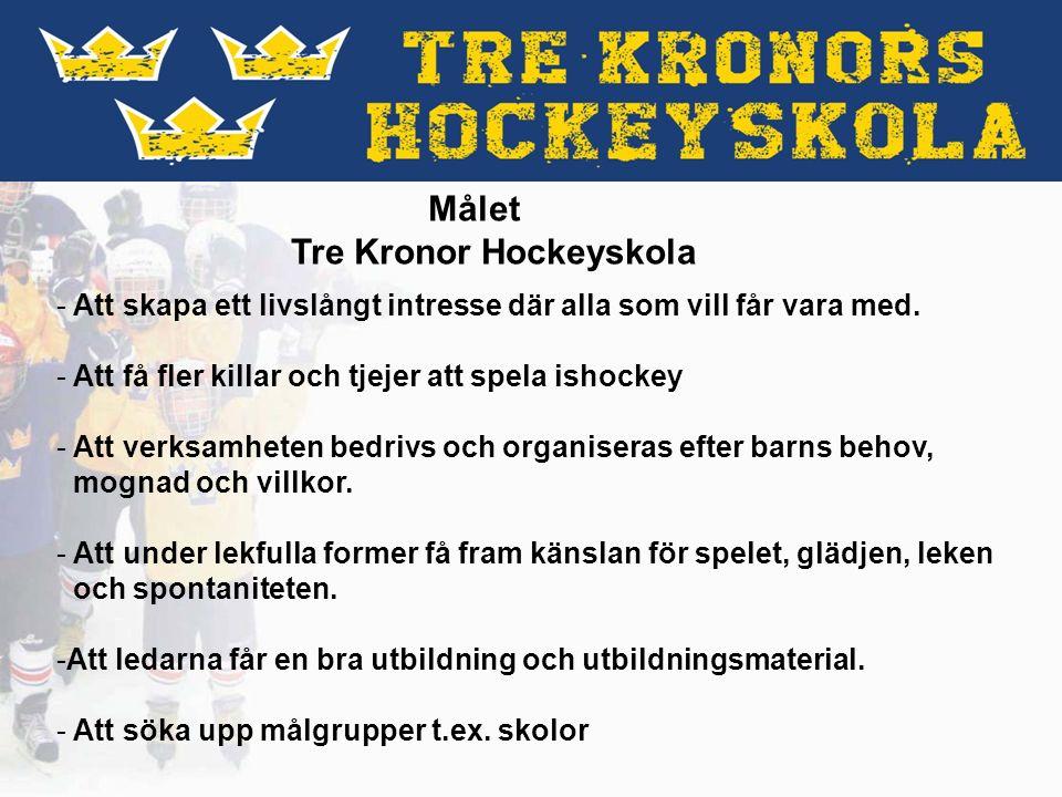 Vad skall vi göra: Målet är att arrangera en idrottsdag/friluftsdag där elever i åk 0-2 får en möjlighet att prova på ishockey.