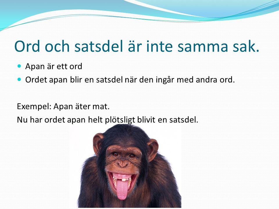 Svenska språkets uppbyggnad BokstavAa Ord (ordklass)Apa Sats (Huvudsats)Apan äter mat Sats (Bisats)som är god MeningApan äter mat, som är god.