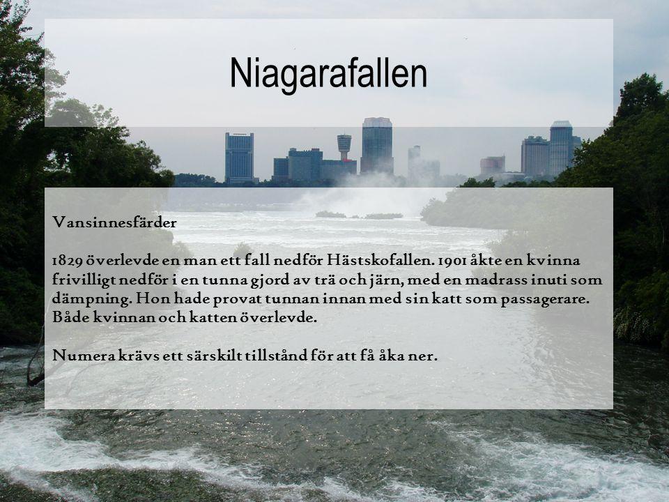 Niagarafallen Populärt turistmål Flera miljoner besöker vattenfallen varje år, främst på sommaren. Det finns gångbroar alldeles under vattenfallen och
