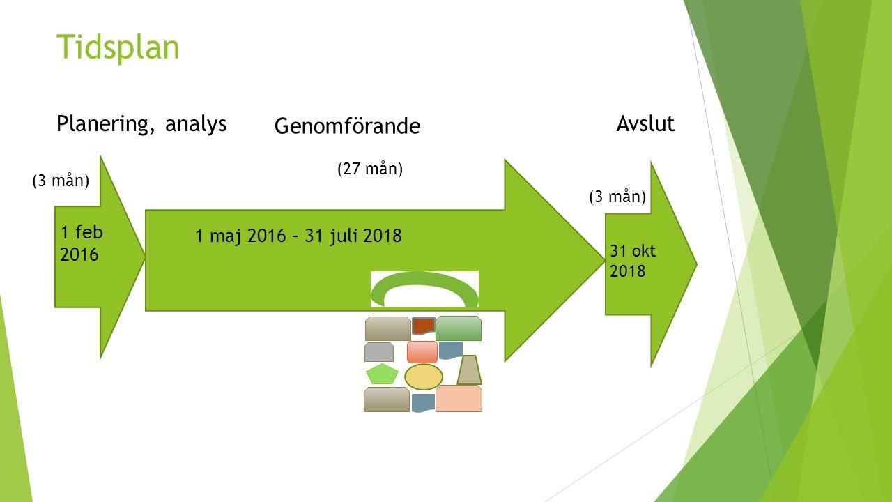 Tidsplan 1 feb 2016 1 maj 2016 – 31 juli 2018 31 okt 2018 (3 mån) Planering, analys Genomförande Avslut (27 mån)