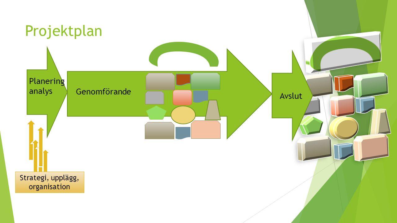 Projektplan Planering analys Genomförande Strategi, upplägg, organisation Avslut
