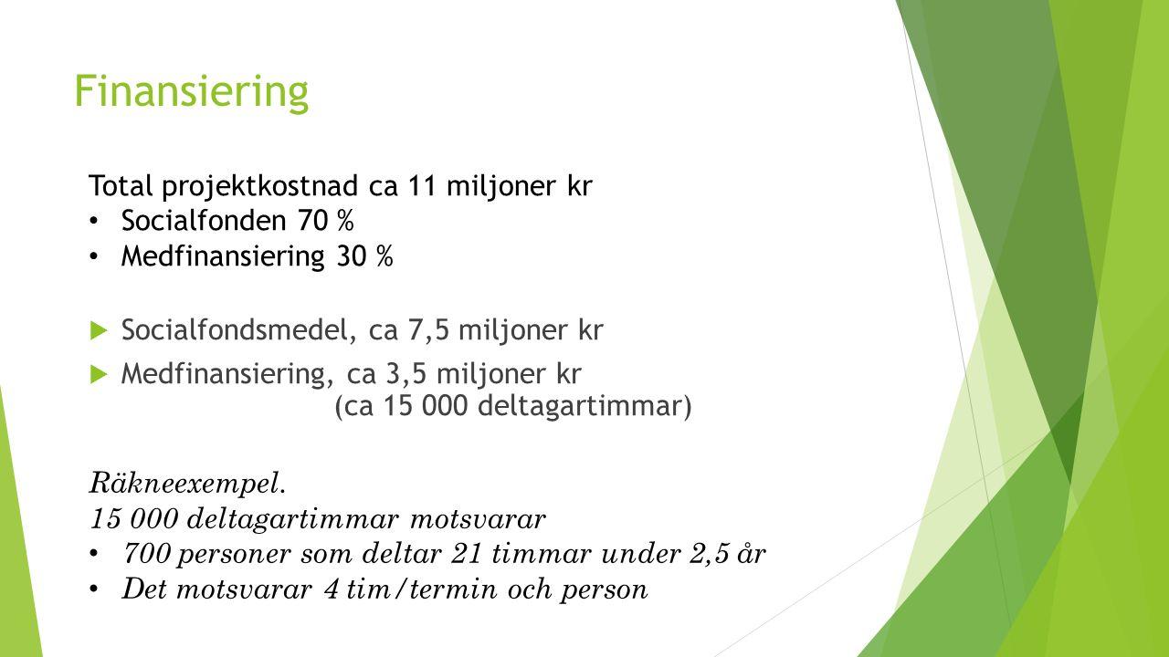 Finansiering  Socialfondsmedel, ca 7,5 miljoner kr  Medfinansiering, ca 3,5 miljoner kr (ca 15 000 deltagartimmar) Total projektkostnad ca 11 miljon