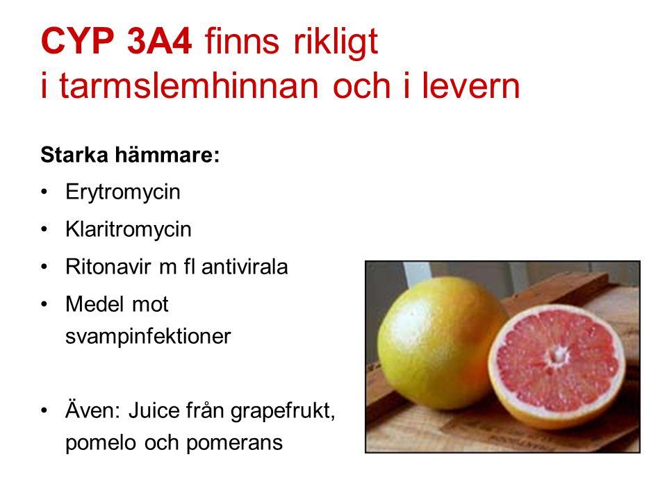 CYP 3A4 finns rikligt i tarmslemhinnan och i levern Starka hämmare: Erytromycin Klaritromycin Ritonavir m fl antivirala Medel mot svampinfektioner Äve