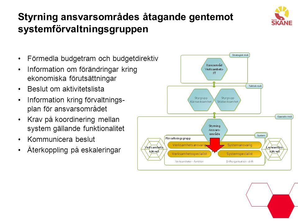 Styrning ansvarsområdes åtagande gentemot systemförvaltningsgruppen Förmedla budgetram och budgetdirektiv Information om förändringar kring ekonomiska