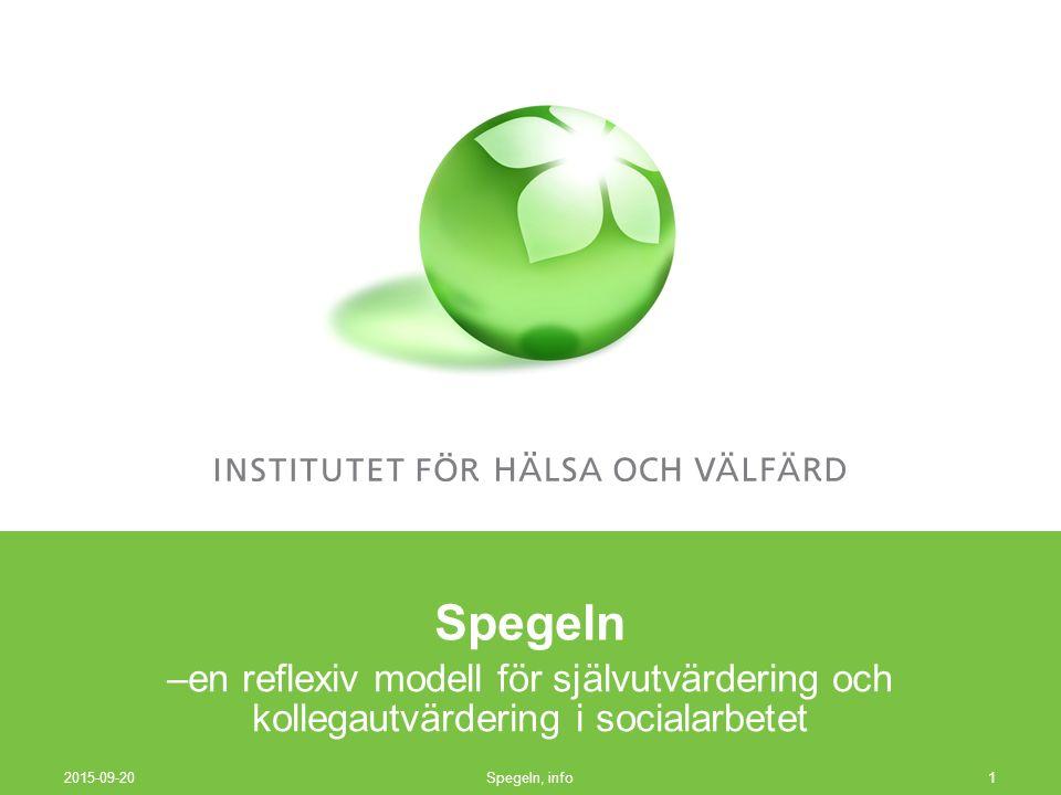 Spegeln, info12 Centrala principer individualitet mervärde för den enskilda socialarbetare: utvärdering som stöd för det egna arbetet och för den egna läroprocessen.