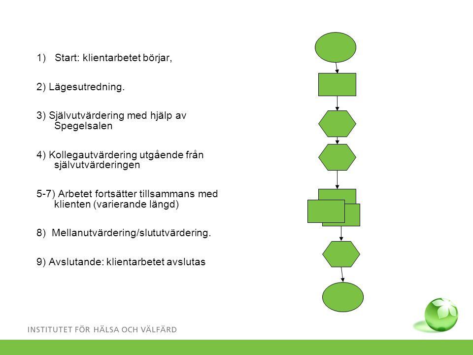 Spegeln, info 28 Resultat.En struktur som stöder socialarbetarens arbete.