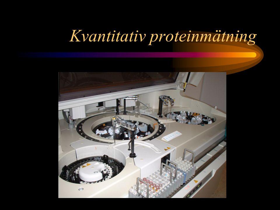 Gruppdiskussion Vilka analyser ingår i P-Proteinfraktioner.