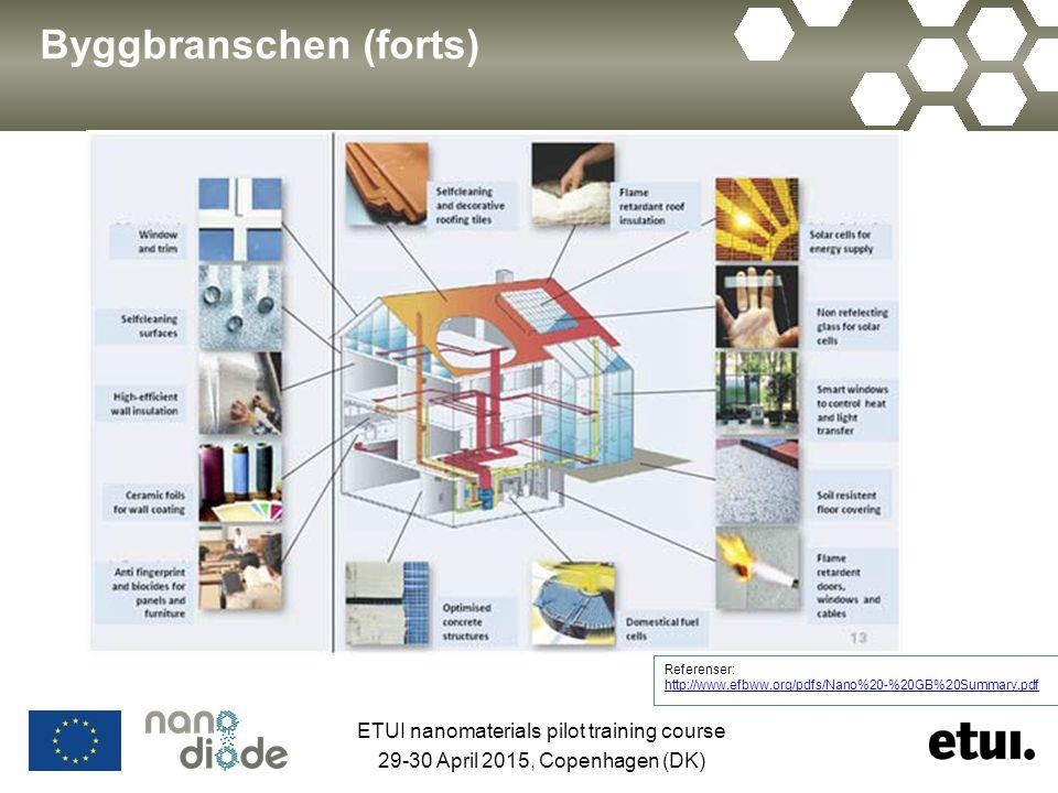 Byggbranschen (forts) Referenser: http://www.efbww.org/pdfs/Nano%20-%20GB%20Summary.pdf http://www.efbww.org/pdfs/Nano%20-%20GB%20Summary.pdf ETUI nan
