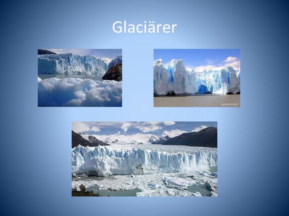Glaciärer