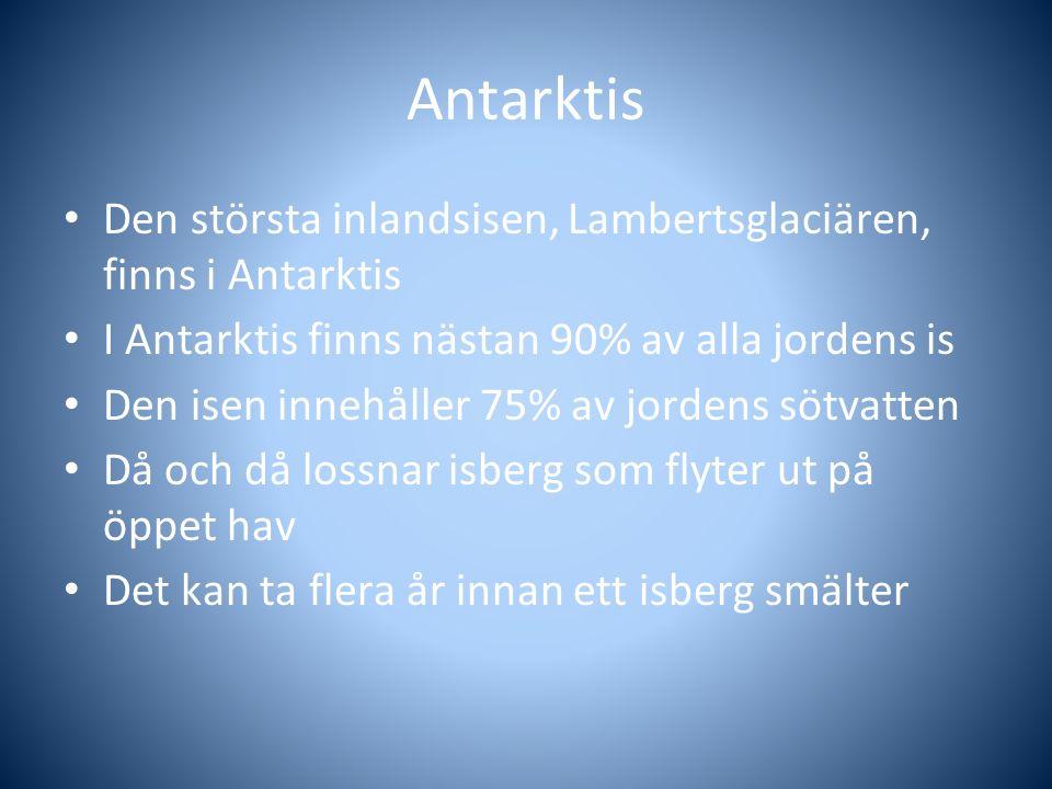 Antarktis Den största inlandsisen, Lambertsglaciären, finns i Antarktis I Antarktis finns nästan 90% av alla jordens is Den isen innehåller 75% av jor