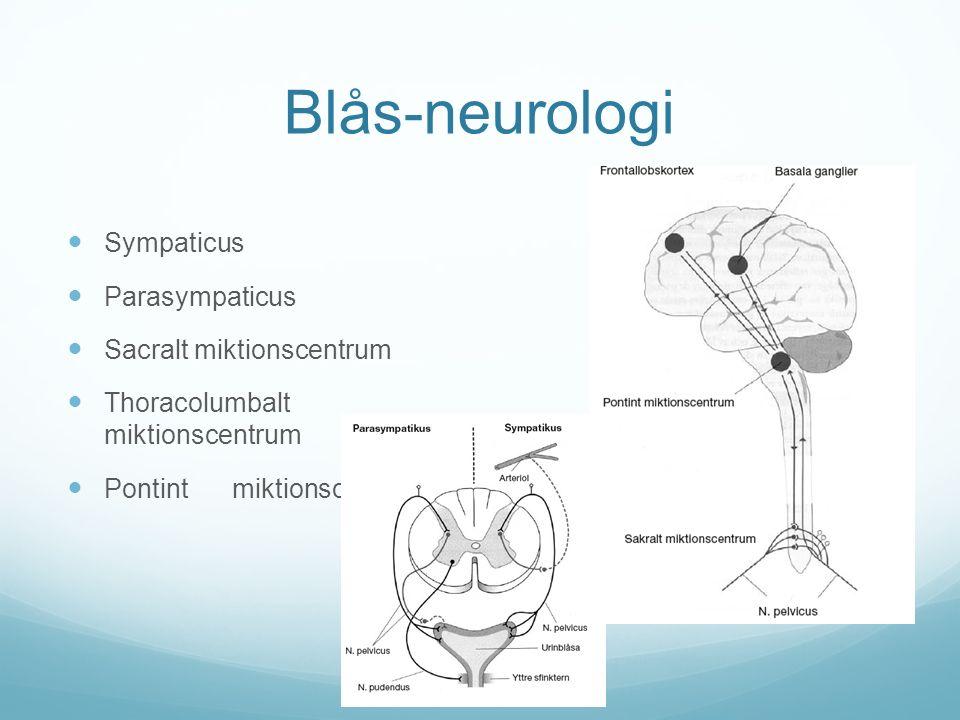 Enures - utredning Undersökning Längd och vikt Buk Genitalia – fimosis, labiasynekier, irritation Ryggslut – dolt ryggmärgsbrock.