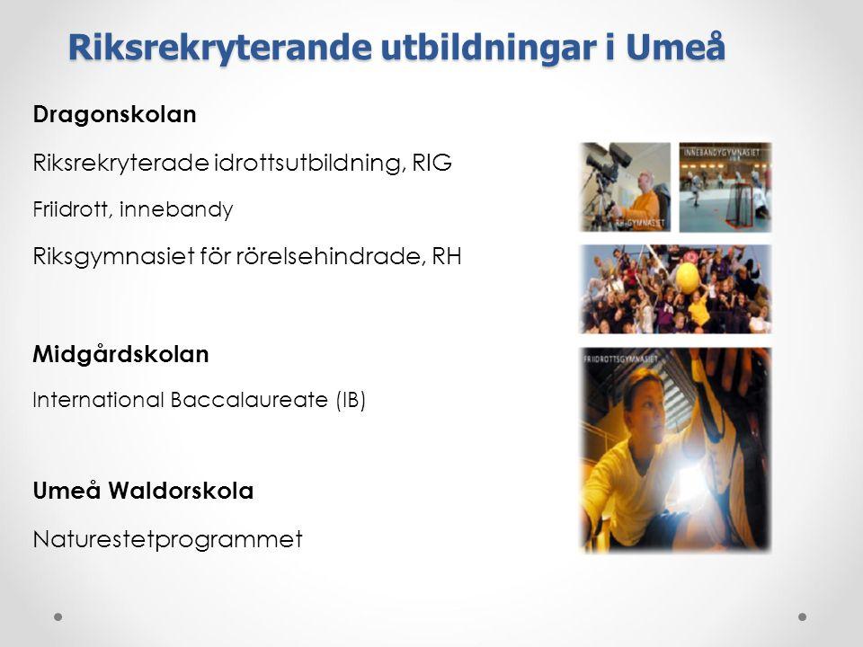 Riksrekryterande utbildningar i Umeå Dragonskolan Riksrekryterade idrottsutbildning, RIG Friidrott, innebandy Riksgymnasiet för rörelsehindrade, RH Midgårdskolan International Baccalaureate (IB) Umeå Waldorskola Naturestetprogrammet
