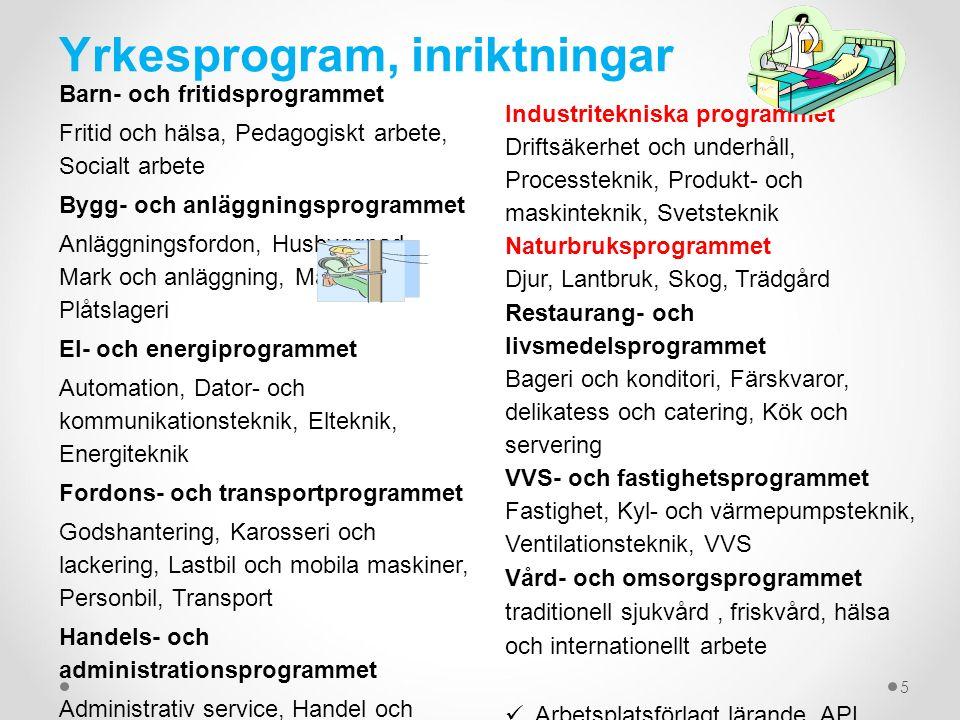 Yrkesprogram, inriktningar Barn- och fritidsprogrammet Fritid och hälsa, Pedagogiskt arbete, Socialt arbete Bygg- och anläggningsprogrammet Anläggning