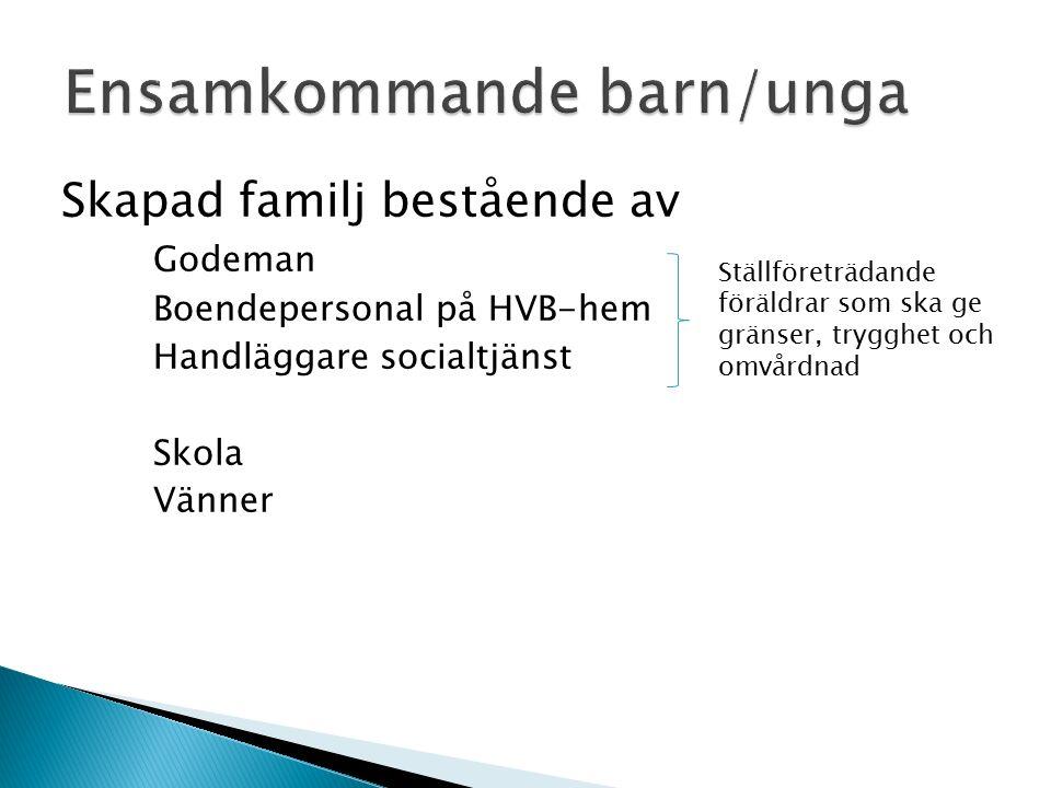 Skapad familj bestående av Godeman Boendepersonal på HVB-hem Handläggare socialtjänst Skola Vänner Ställföreträdande föräldrar som ska ge gränser, trygghet och omvårdnad