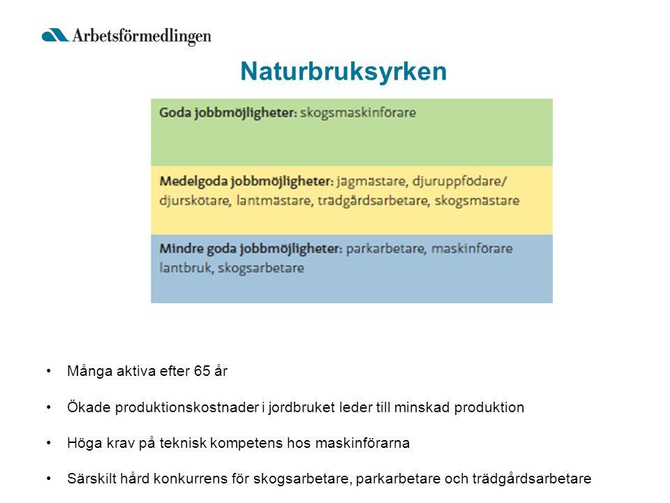 Naturbruksyrken Många aktiva efter 65 år Ökade produktionskostnader i jordbruket leder till minskad produktion Höga krav på teknisk kompetens hos maskinförarna Särskilt hård konkurrens för skogsarbetare, parkarbetare och trädgårdsarbetare