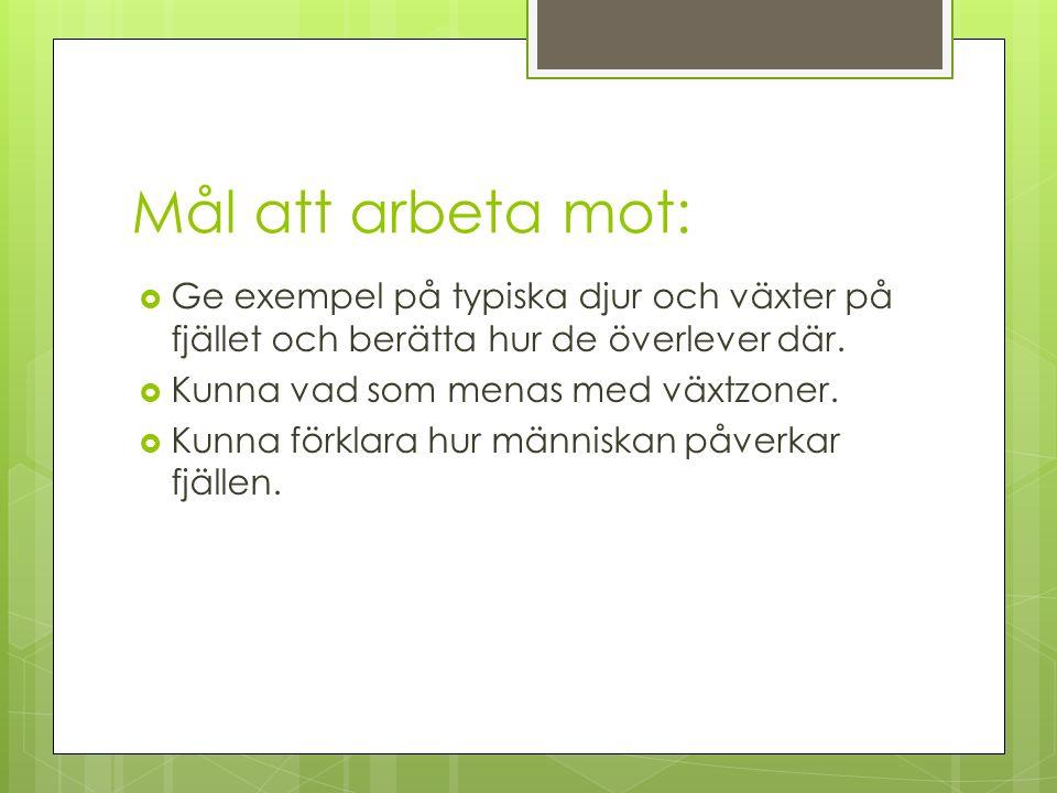 En fjärdedel av Sverige består av fjällandskap.