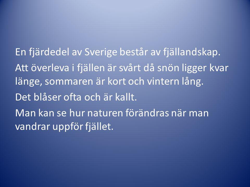 En fjärdedel av Sverige består av fjällandskap. Att överleva i fjällen är svårt då snön ligger kvar länge, sommaren är kort och vintern lång. Det blås
