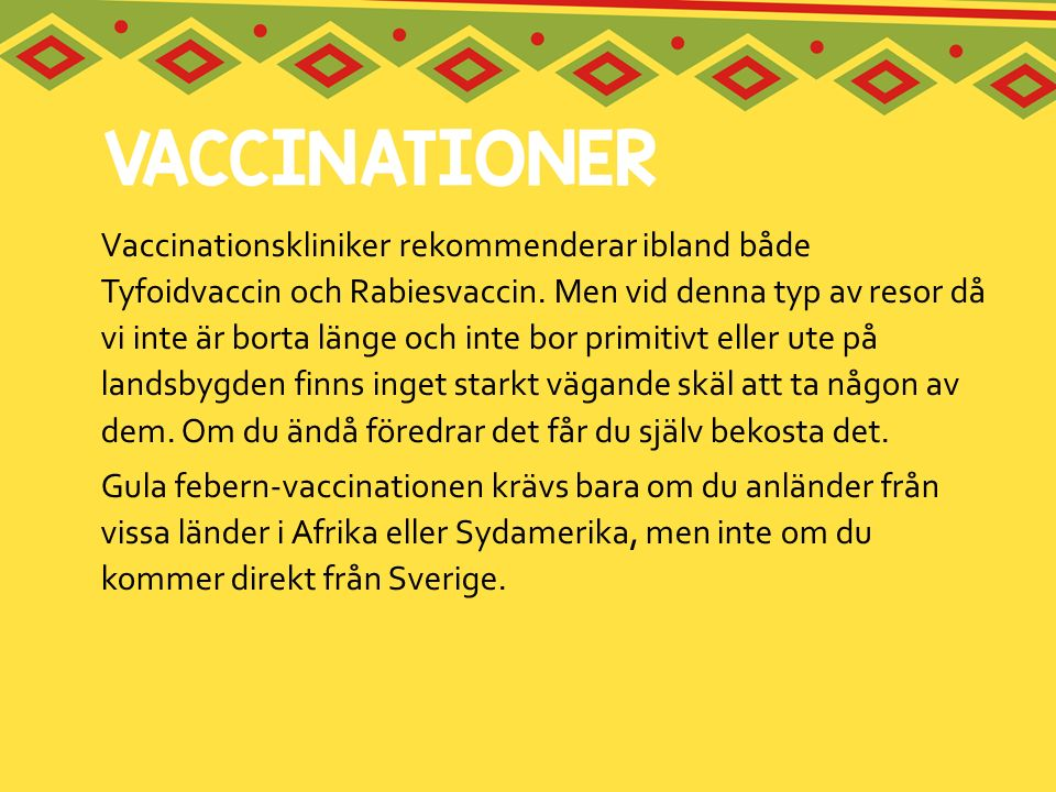 Vaccinationskliniker rekommenderar ibland både Tyfoidvaccin och Rabiesvaccin. Men vid denna typ av resor då vi inte är borta länge och inte bor primit