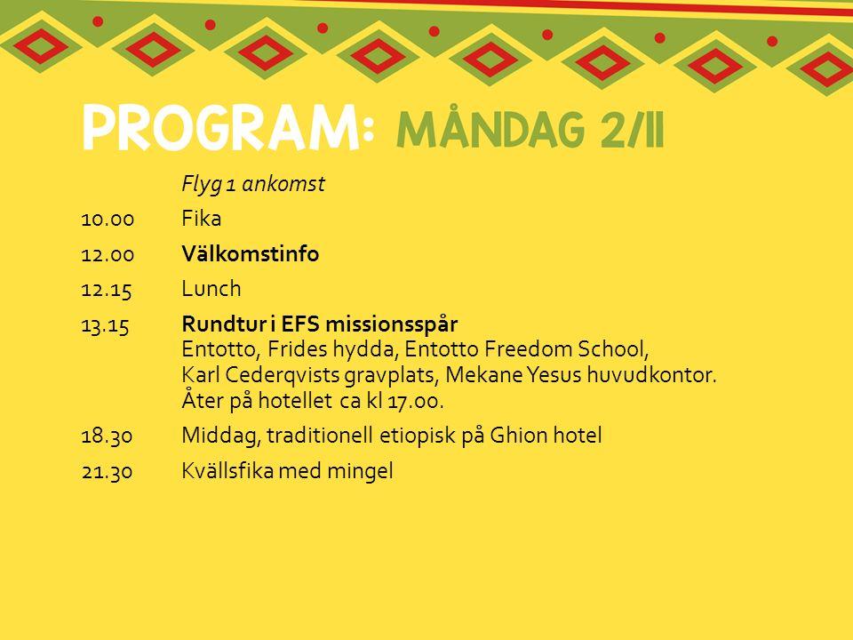Flyg 1 ankomst 10.00Fika 12.00 Välkomstinfo 12.15Lunch 13.15Rundtur i EFS missionsspår Entotto, Frides hydda, Entotto Freedom School, Karl Cederqvists