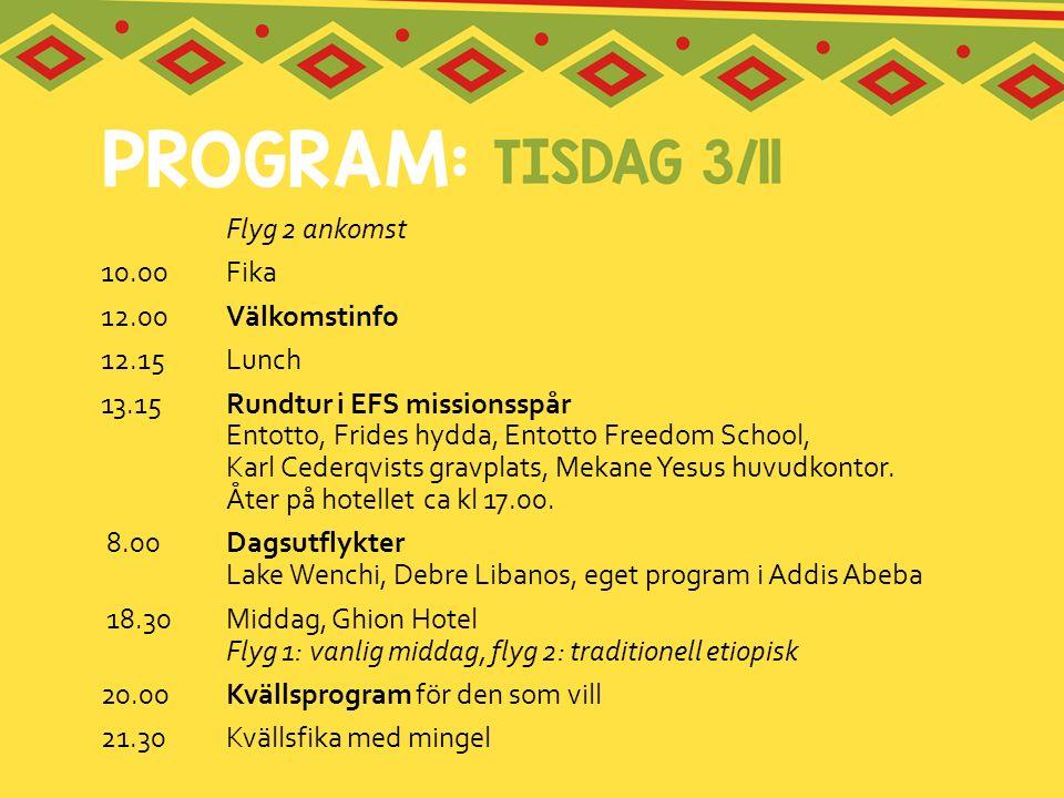 Flyg 2 ankomst 10.00Fika 12.00 Välkomstinfo 12.15Lunch 13.15Rundtur i EFS missionsspår Entotto, Frides hydda, Entotto Freedom School, Karl Cederqvists