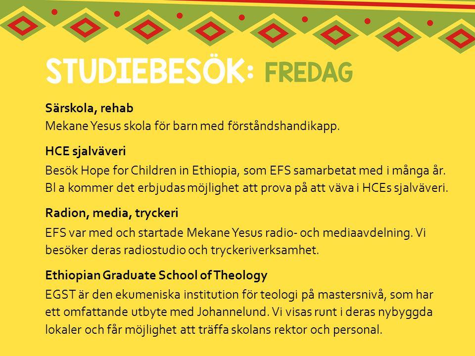 Särskola, rehab Mekane Yesus skola för barn med förståndshandikapp. HCE sjalväveri Besök Hope for Children in Ethiopia, som EFS samarbetat med i många