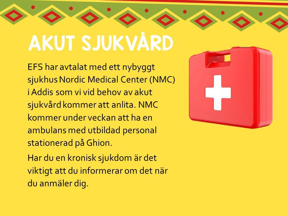 EFS har avtalat med ett nybyggt sjukhus Nordic Medical Center (NMC) i Addis som vi vid behov av akut sjukvård kommer att anlita. NMC kommer under veck