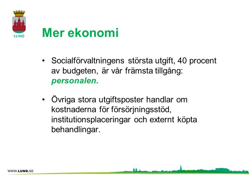 Mer ekonomi Socialförvaltningens största utgift, 40 procent av budgeten, är vår främsta tillgång: personalen. Övriga stora utgiftsposter handlar om ko