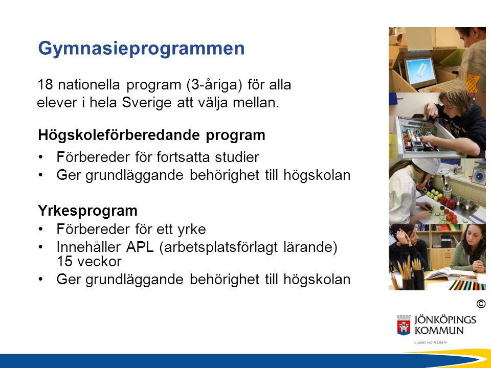 © Högskoleförberedande program Förbereder för fortsatta studier Ger grundläggande behörighet till högskolan Yrkesprogram Förbereder för ett yrke Innehåller APL (arbetsplatsförlagt lärande) 15 veckor Ger grundläggande behörighet till högskolan Gymnasieprogrammen 18 nationella program (3-åriga) för alla elever i hela Sverige att välja mellan.