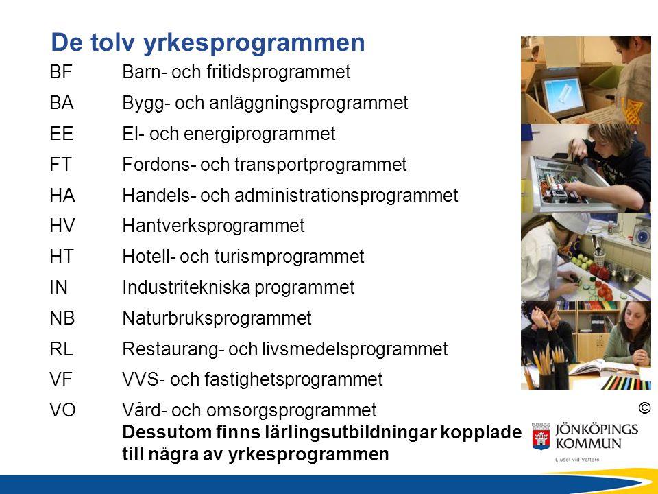 © De tolv yrkesprogrammen BFBarn- och fritidsprogrammet BABygg- och anläggningsprogrammet EEEl- och energiprogrammet FTFordons- och transportprogrammet HAHandels- och administrationsprogrammet HVHantverksprogrammet HTHotell- och turismprogrammet INIndustritekniska programmet NBNaturbruksprogrammet RLRestaurang- och livsmedelsprogrammet VFVVS- och fastighetsprogrammet VOVård- och omsorgsprogrammet Dessutom finns lärlingsutbildningar kopplade till några av yrkesprogrammen