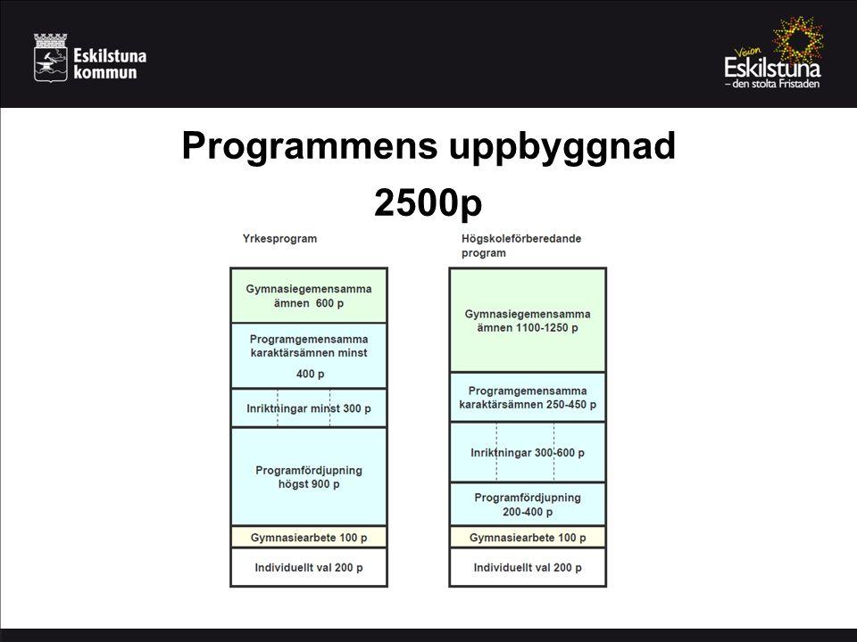 Programmens uppbyggnad 2500p