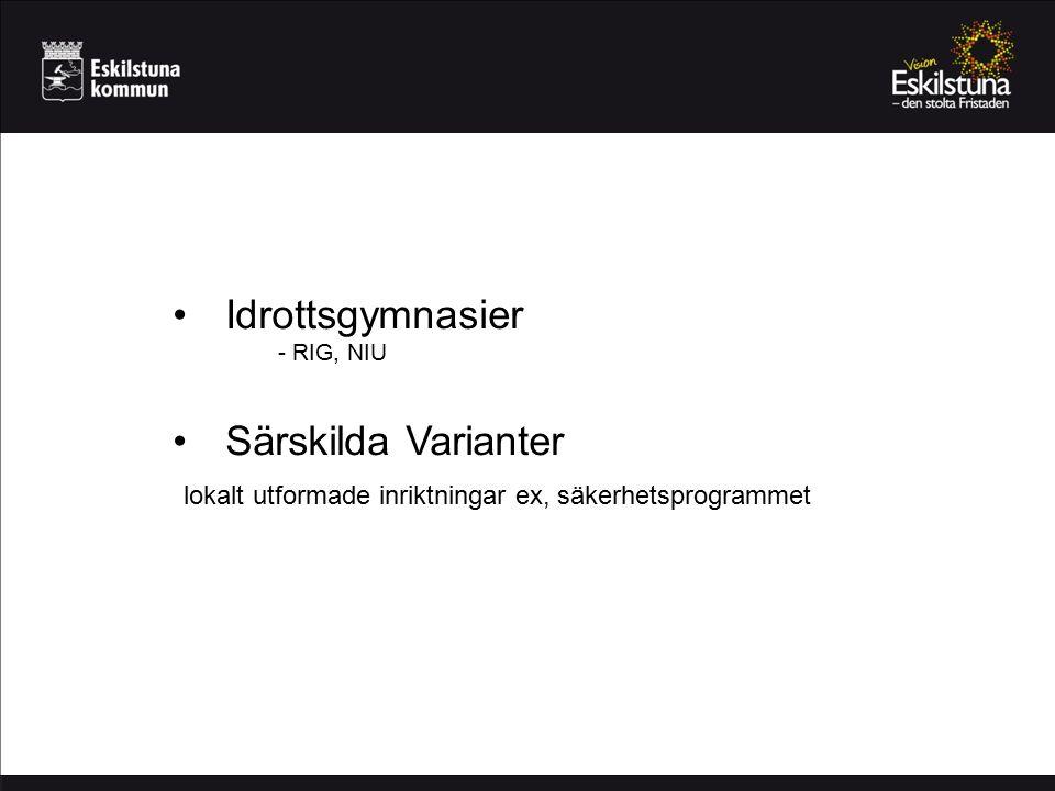 Språkintroduktion För nyanlända ungdomar med utländsk bakgrund Mycket svenskundervisning Obehöriga elever Snabb övergång till gymnasieprogram eller annan utbildning Kan läsa upp till högskoleförberedande program SKA erbjudas av hemkommunen