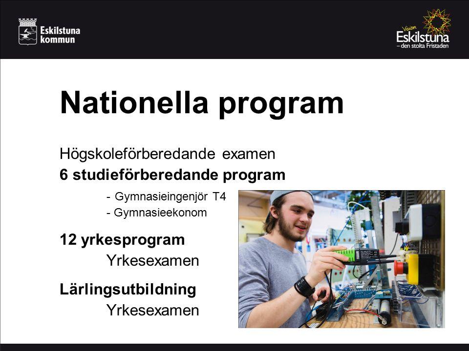 Nationella program Högskoleförberedande examen 6 studieförberedande program - Gymnasieingenjör T4 - Gymnasieekonom 12 yrkesprogram Yrkesexamen Lärlingsutbildning Yrkesexamen