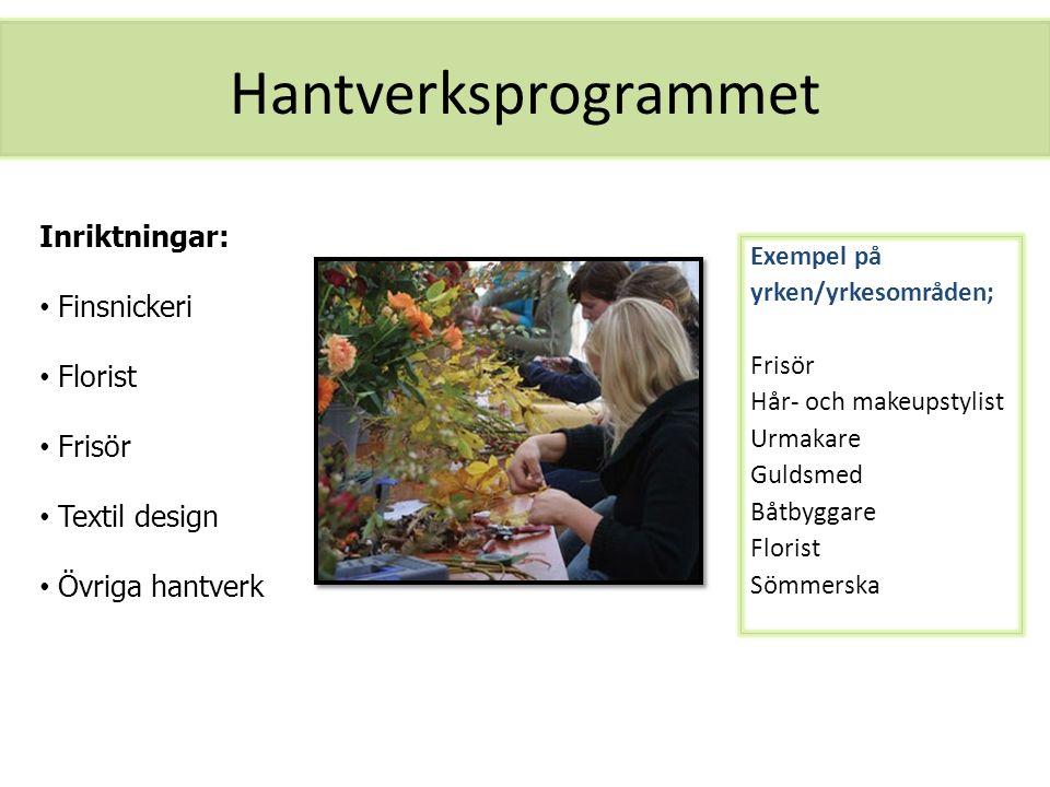 Hantverksprogrammet Exempel på yrken/yrkesområden; Frisör Hår- och makeupstylist Urmakare Guldsmed Båtbyggare Florist Sömmerska Inriktningar: Finsnick