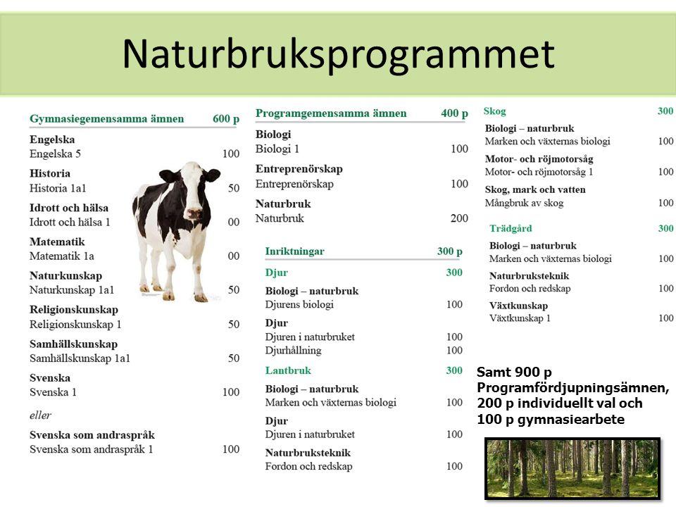 Naturbruksprogrammet Samt 900 p Programfördjupningsämnen, 200 p individuellt val och 100 p gymnasiearbete