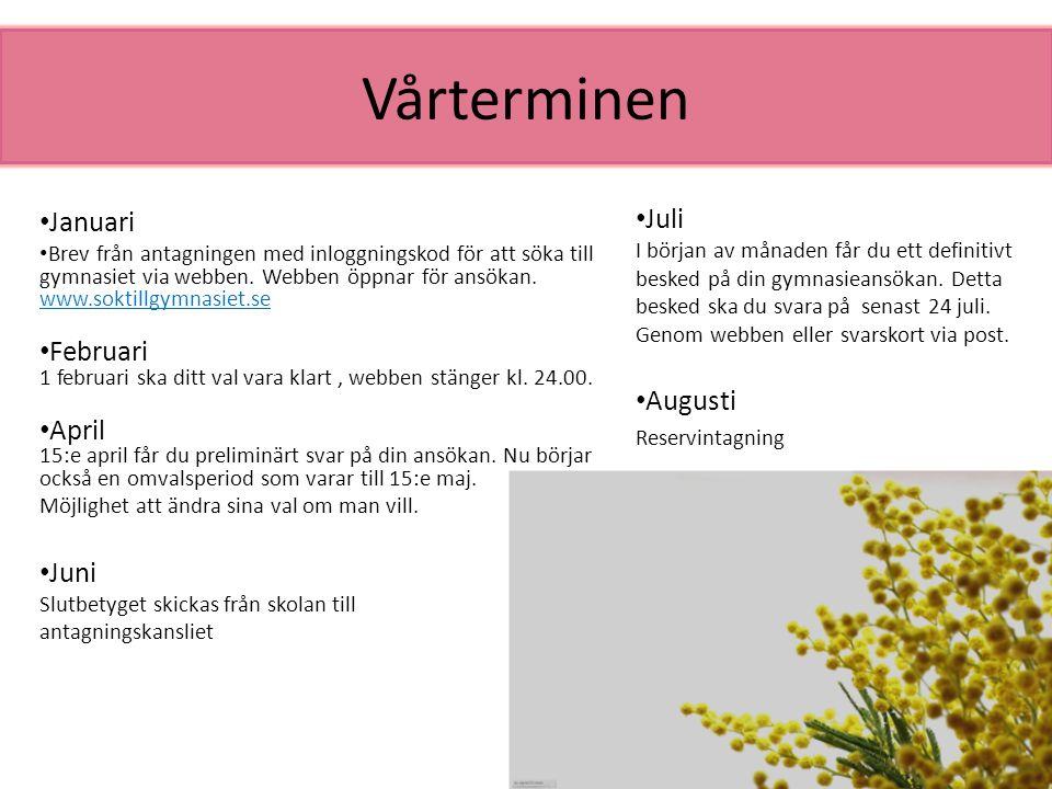Vårterminen Januari Brev från antagningen med inloggningskod för att söka till gymnasiet via webben. Webben öppnar för ansökan. www.soktillgymnasiet.s