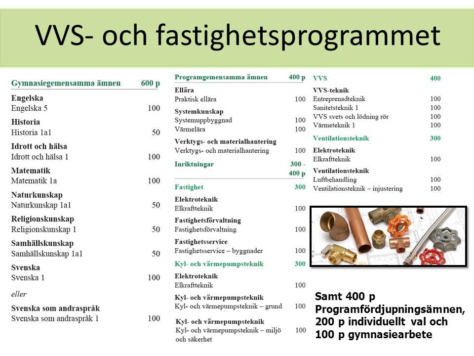 VVS- och fastighetsprogrammet Samt 400 p Programfördjupningsämnen, 200 p individuellt val och 100 p gymnasiearbete