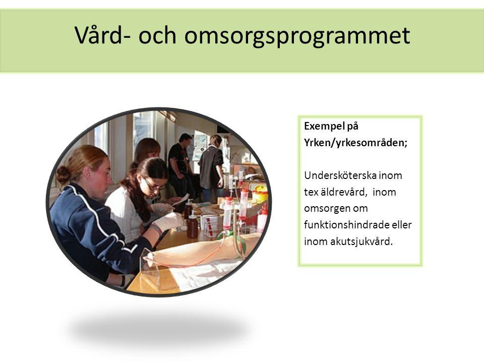 Vård- och omsorgsprogrammet Exempel på Yrken/yrkesområden; Undersköterska inom tex äldrevård, inom omsorgen om funktionshindrade eller inom akutsjukvå