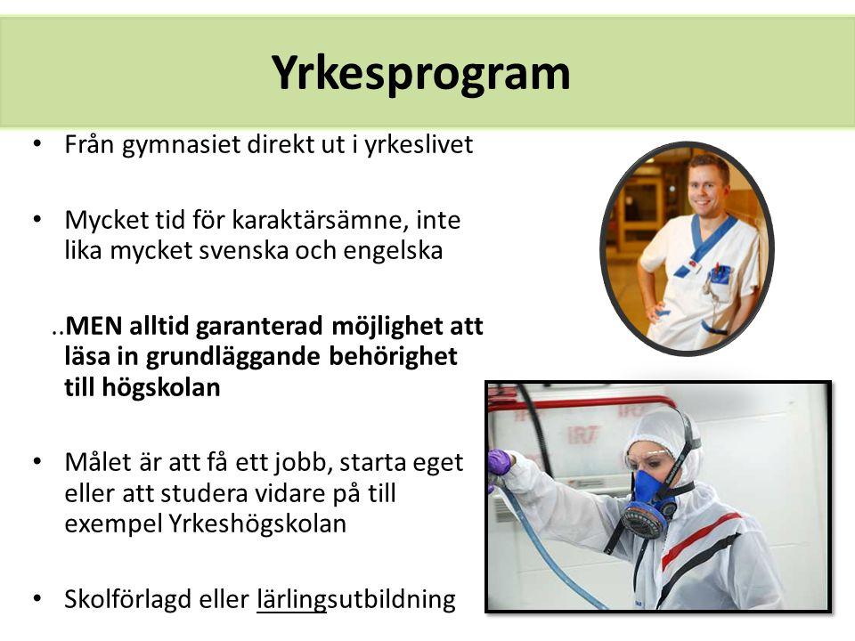 Yrkesprogram Från gymnasiet direkt ut i yrkeslivet Mycket tid för karaktärsämne, inte lika mycket svenska och engelska..MEN alltid garanterad möjlighe