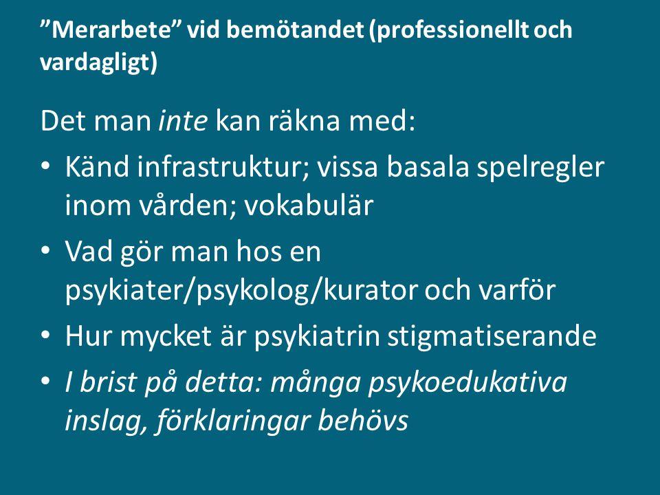 """""""Merarbete"""" vid bemötandet (professionellt och vardagligt) Det man inte kan räkna med: Känd infrastruktur; vissa basala spelregler inom vården; vokabu"""