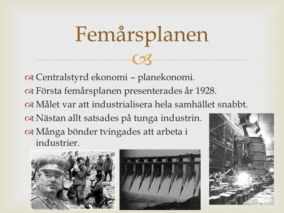   Centralstyrd ekonomi – planekonomi.  Första femårsplanen presenterades år 1928.  Målet var att industrialisera hela samhället snabbt.  Nästan a