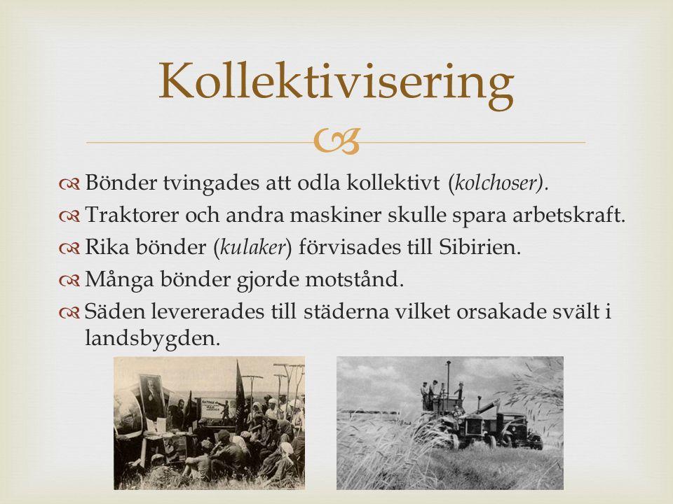   Bönder tvingades att odla kollektivt ( kolchoser).  Traktorer och andra maskiner skulle spara arbetskraft.  Rika bönder ( kulaker ) förvisades t