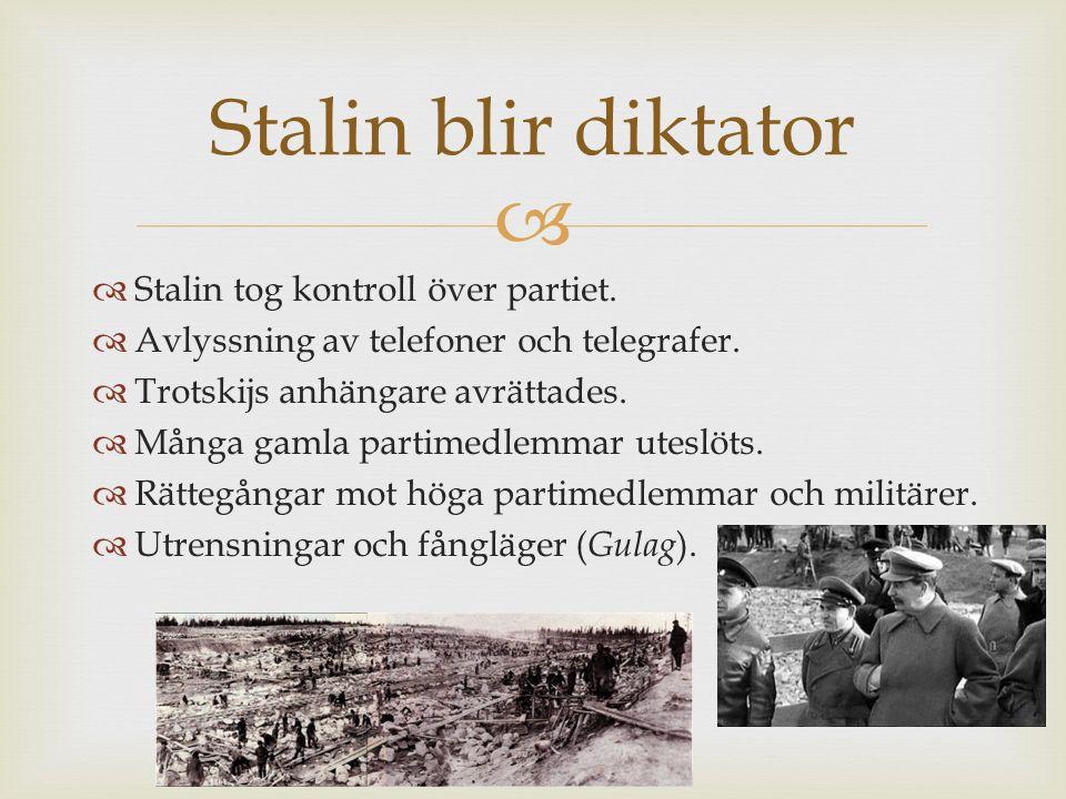   Stalin tog kontroll över partiet.  Avlyssning av telefoner och telegrafer.  Trotskijs anhängare avrättades.  Många gamla partimedlemmar uteslöt