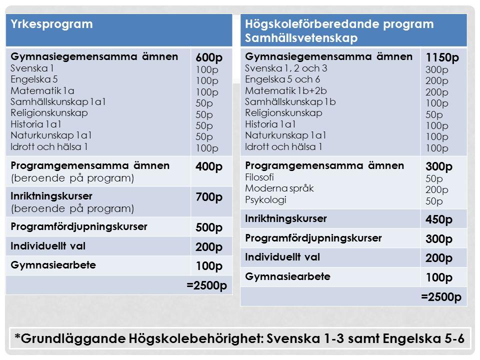 Yrkesprogram Gymnasiegemensamma ämnen Svenska 1 Engelska 5 Matematik 1a Samhällskunskap 1a1 Religionskunskap Historia 1a1 Naturkunskap 1a1 Idrott och