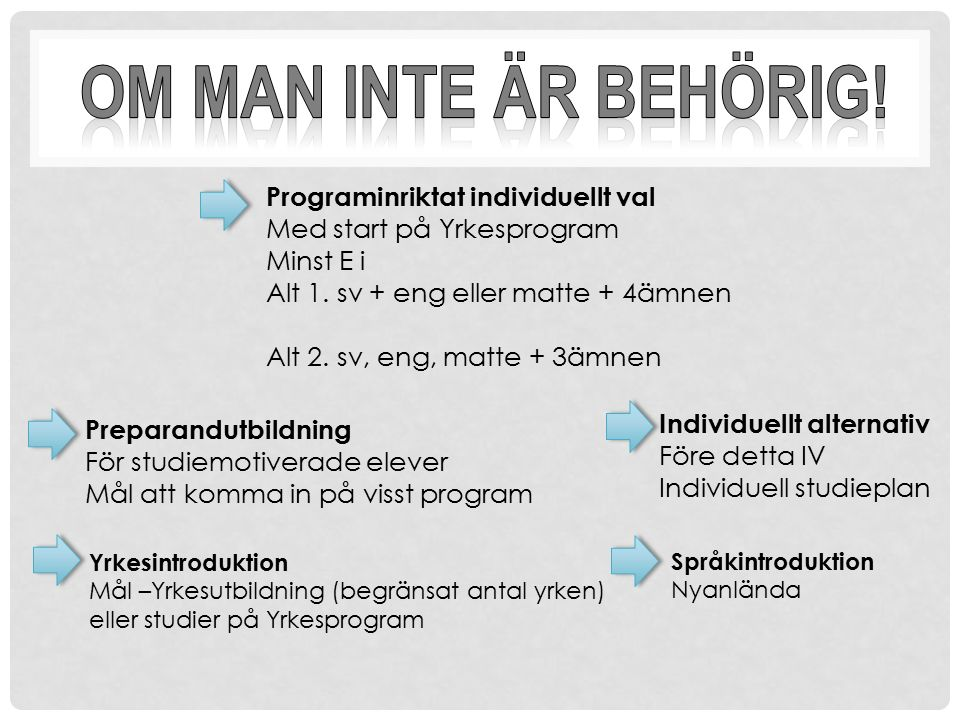 Programinriktat individuellt val Med start på Yrkesprogram Minst E i Alt 1. sv + eng eller matte + 4ämnen Alt 2. sv, eng, matte + 3ämnen Preparandutbi